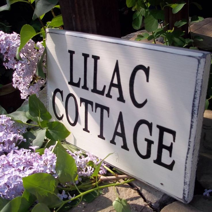 Pin By Potting Shed Designs On Vintage Solid Wood Garden Signs   Pint
