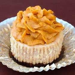 cinnamon cheesecakes/pumpkin icing | Farm Life for my daughter Casey ...