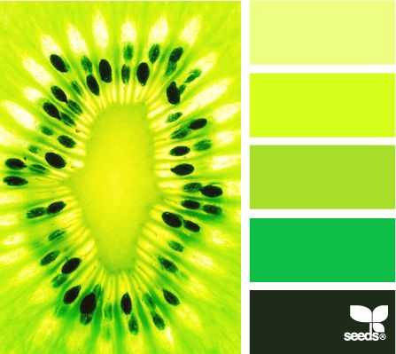 neon seeds