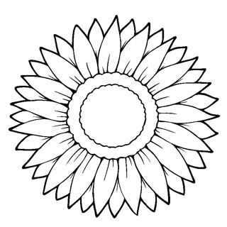 sunflower c colouring pages
