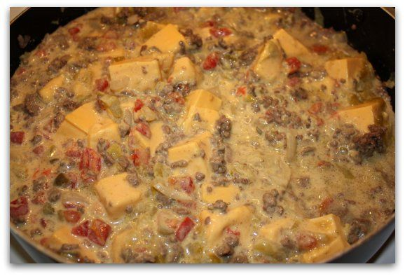 chile con queso revved up the pioneer woman chile con queso revved up ...