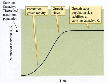 Malthus Human Population Growth Curve