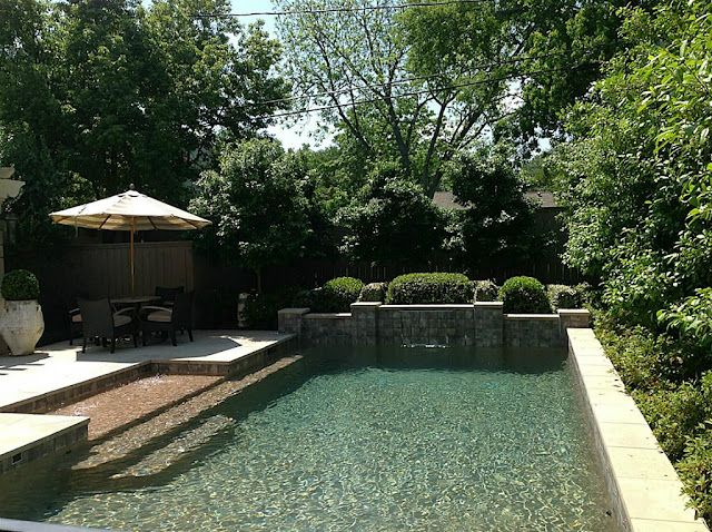 Rectangular Pool Landscaping