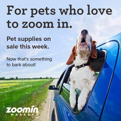 Pin by zoomin market on getzoomin pinterest