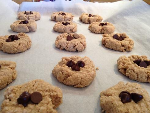 Paleo Almond Butter Cookies - added apple sauce, almond milk and vega ...