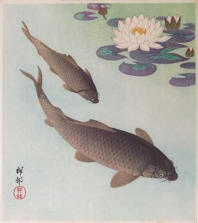 Estampe japonaise carpe koi carp koi dessins et tatouages dr - Dessin carpe koi ...