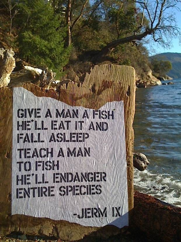 Pin by susan davis cushing berecocool on ecostatements for Teach a man to fish