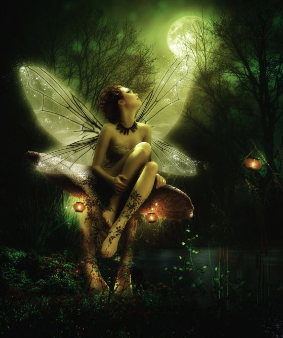 Image result for Full Moon Fairy