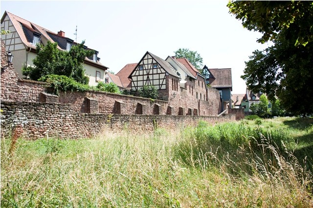 Ladenburg Germany  City pictures : Ladenburg, Germany...our ancestors come from here. Visited and walked ...