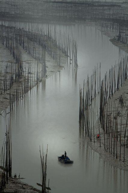 Xiapu, Fujian province China.