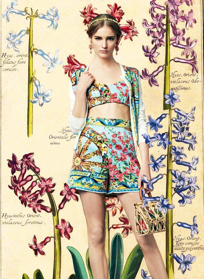 Взгляд день Dolce & Gabbana весна-лето 2014 женская Bouganvillea и колеса Распечатать Brocade шорты и Bralet -