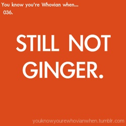 Still Not Ginger
