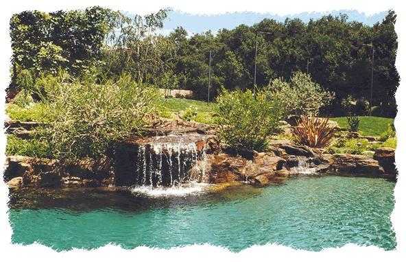 Natural Looking Backyard Pool : Natural looking swimming pools  Outdoor Living  Pinterest