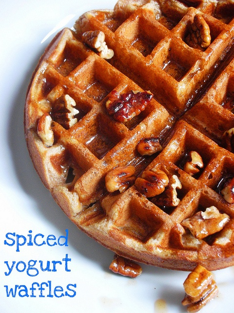 spiced yogurt waffles with toasted pecan maple syrup by ...