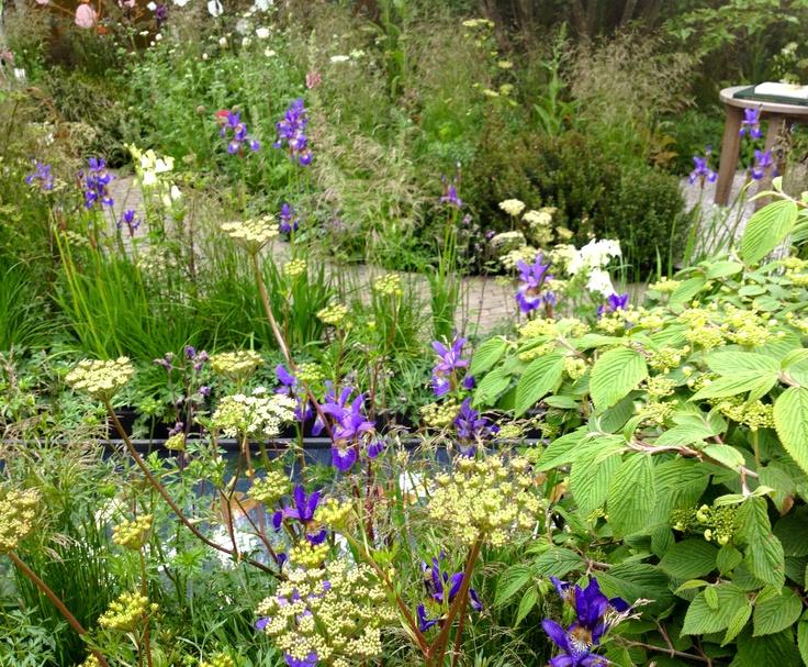 Chelsea planting garden ideas pinterest for Garden designs pinterest
