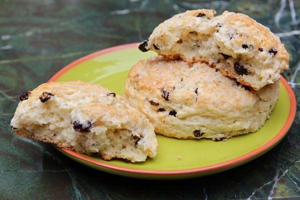 Currant Cream Scones Recipe | Bakepedia