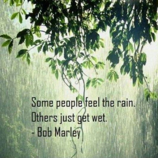 Rainy day quote.