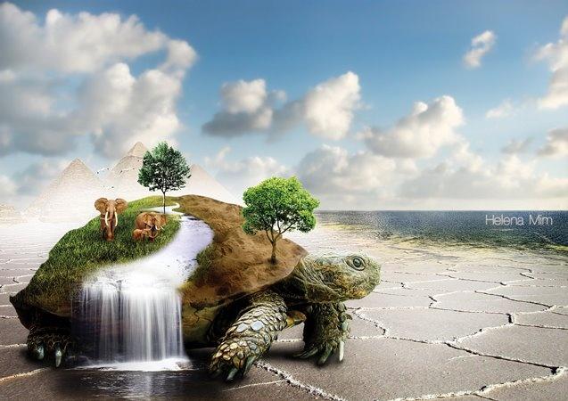 Native American Turtle Island turtle island | Native...