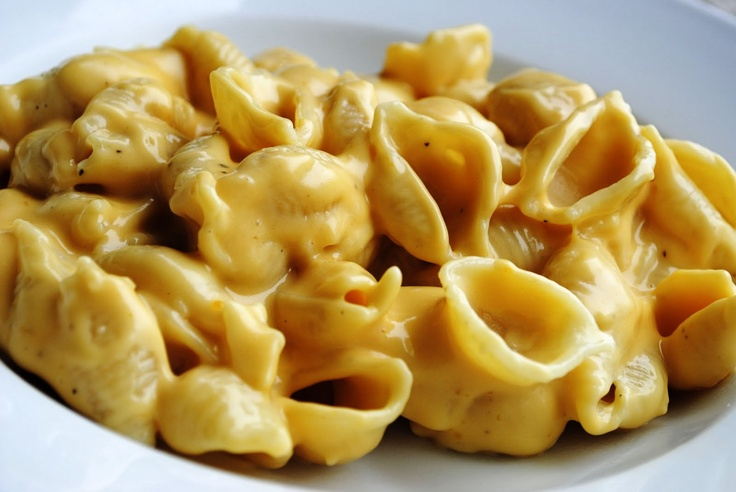 Creamy Shells and Cheese