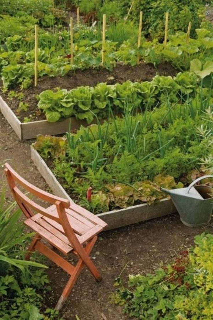 House Vegetable Garden Ideas : Vegetable Garden Ideas Gallery ...