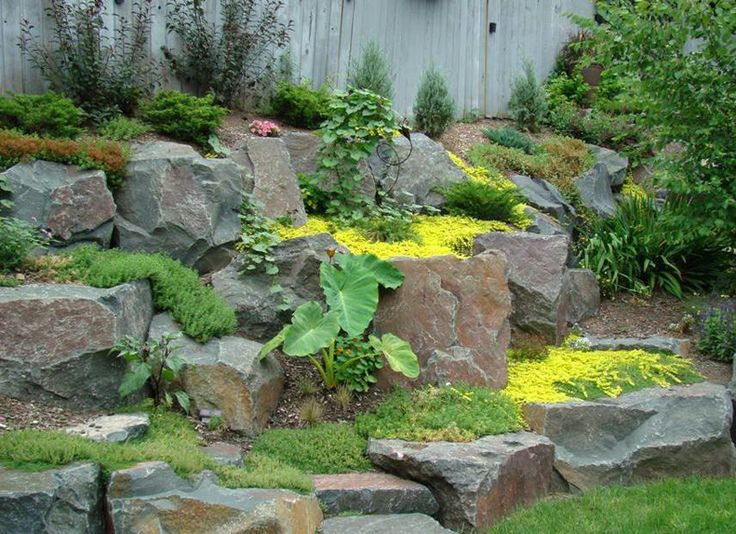 Landscaping Around The House : Landscape landscaping around the house