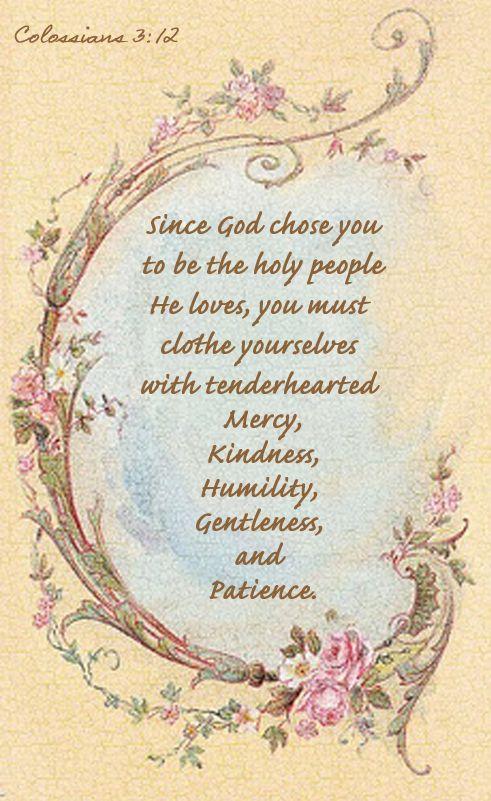 Colossians 3 12 17