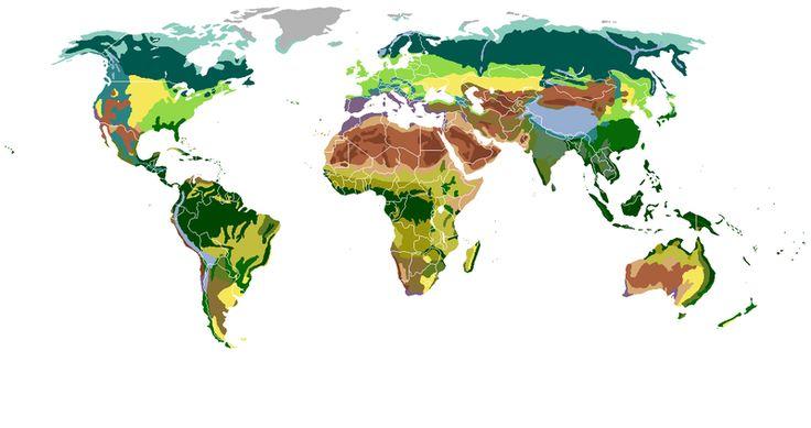 Os principais biomas do mundo.