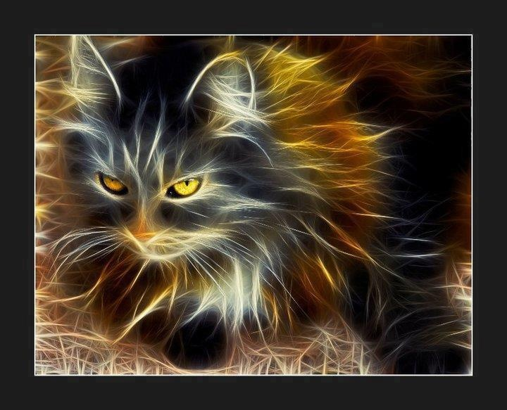 tiger fractal cats e - photo #22