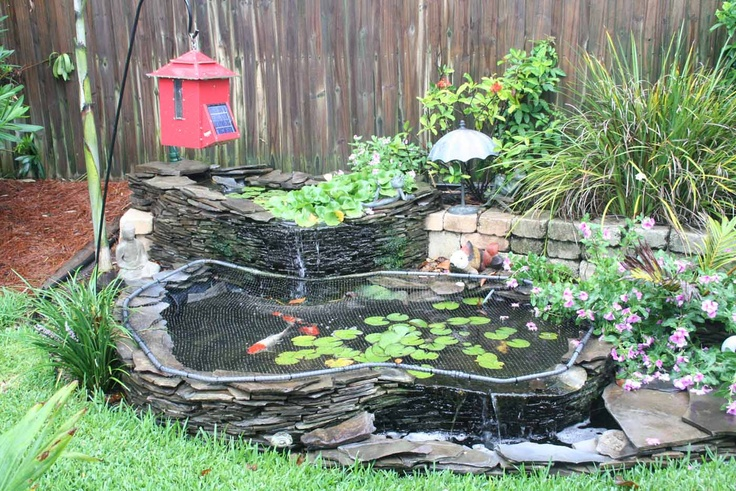 Small koi pond google search for the new home yay for Mini fish pond