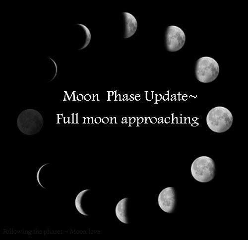 Moon Phases | Witchcraft, Paganism | Pinterest