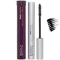 Blink Mascara on Blinc Mascara Black 0 21oz   Products I Love