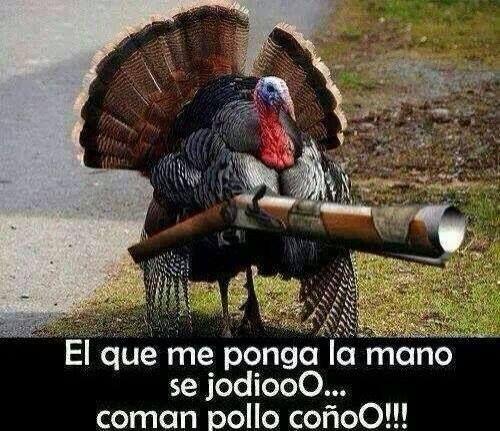 Cuban Thanksgiving Humor