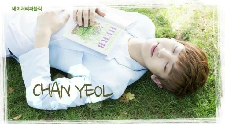 Chanyeol      EXO    Nature RepublicExo Nature Republic Chanyeol