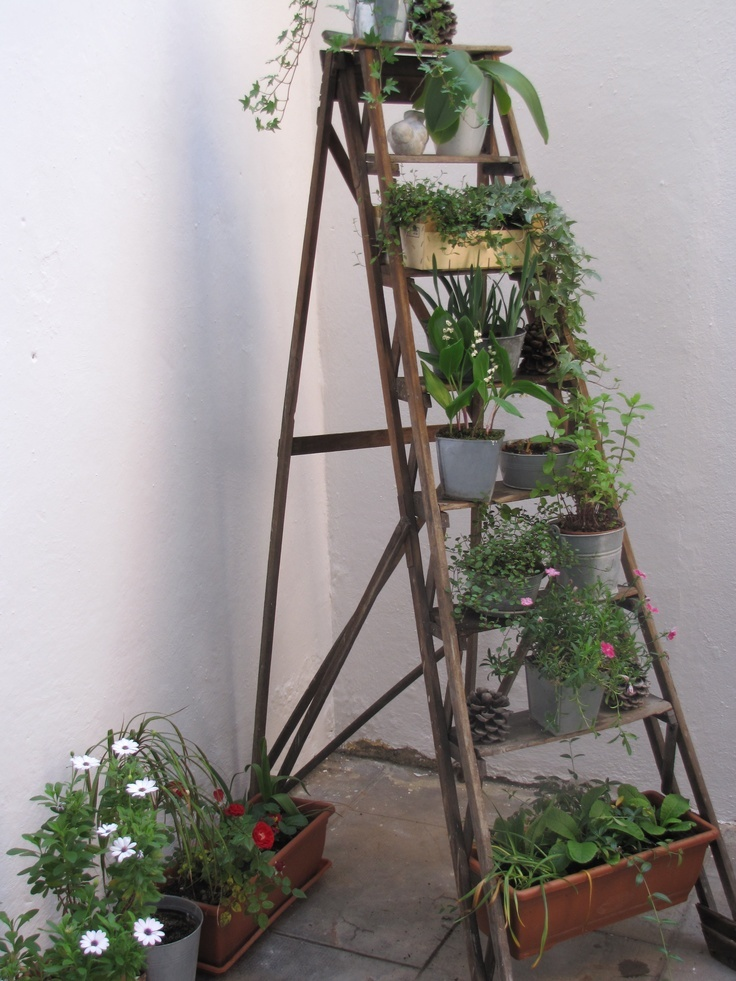 good use for old wooden ladders around the casa pinterest