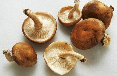Mixed Wild Mushroom Soup   Soups On   Pinterest