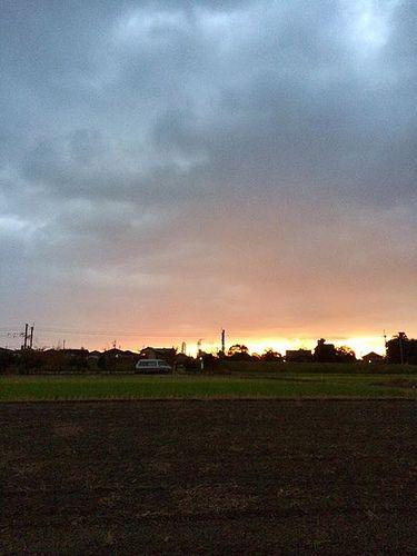 おはよう、11月11日: Photos, Morning   おはよう、11月11日