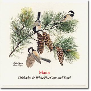 Maines State Flower Maine State Flo...