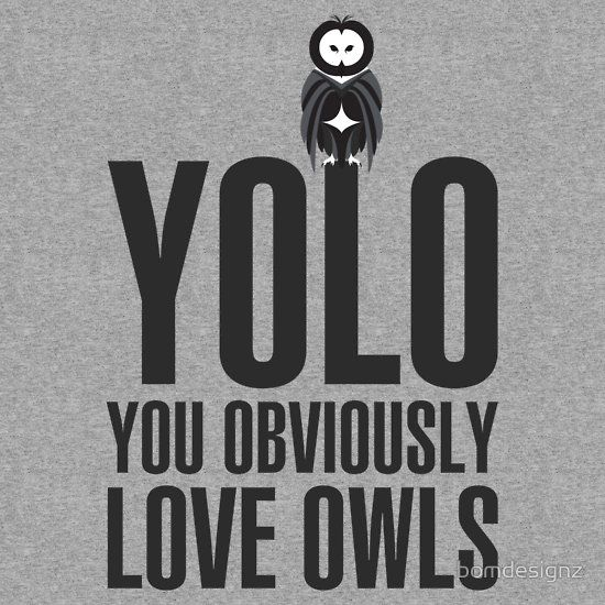 ... for sharing this with me @ckarrels !!! YOLO - YOU OBVIOUSLY LOVE OWLS