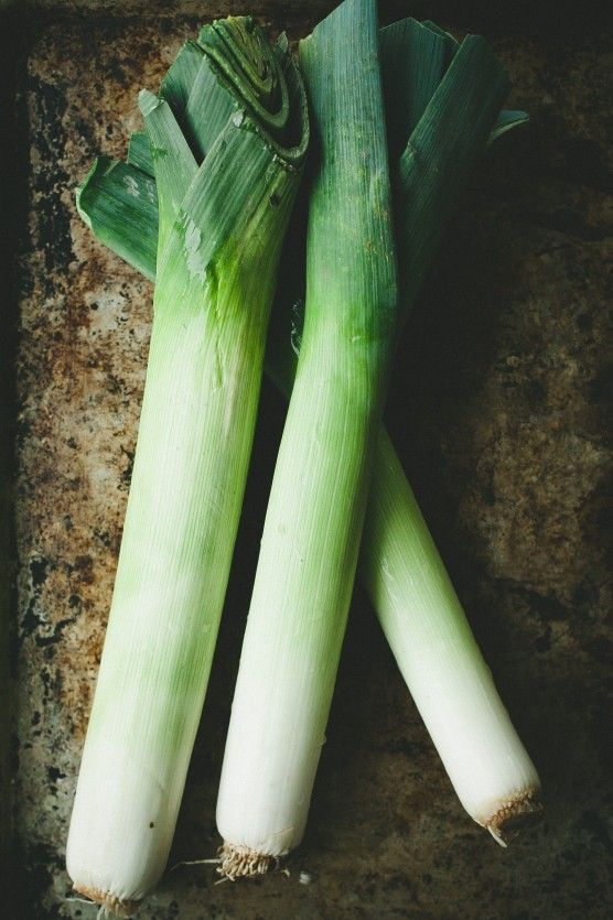 Melted Leeks and Ricotta Tartine // not without salt | A b c d e food ...