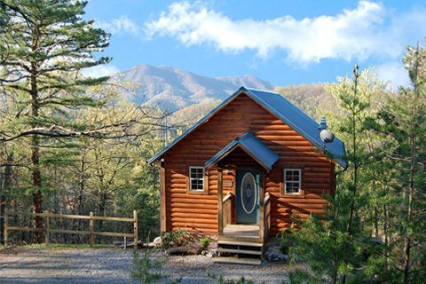 by cabinsusa pigeonforge on 1 bedroom cabins pigeon forge tn p