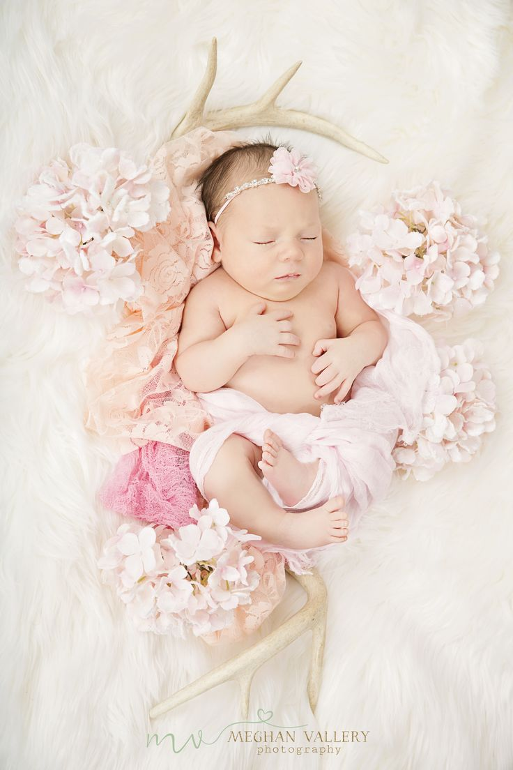 Baby girl newborn photo shoot Craft Shows, Arts and Craft Shows, Festival, Fairs, Shows