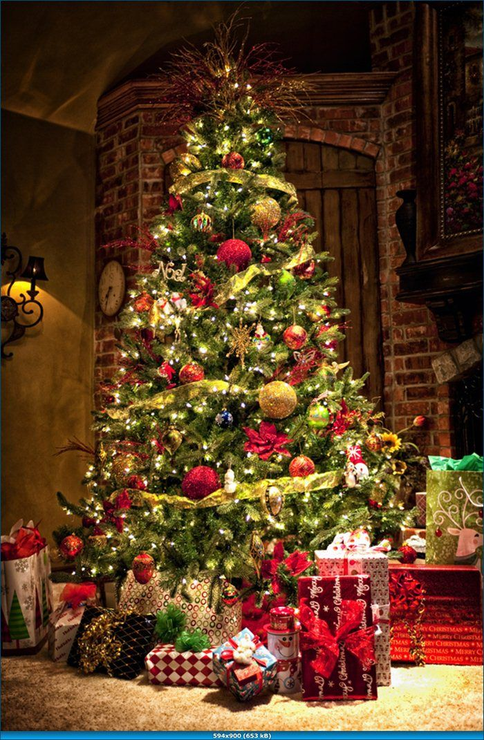 Traditional tree very nice christmas decor pinterest for Images of xmas decorations
