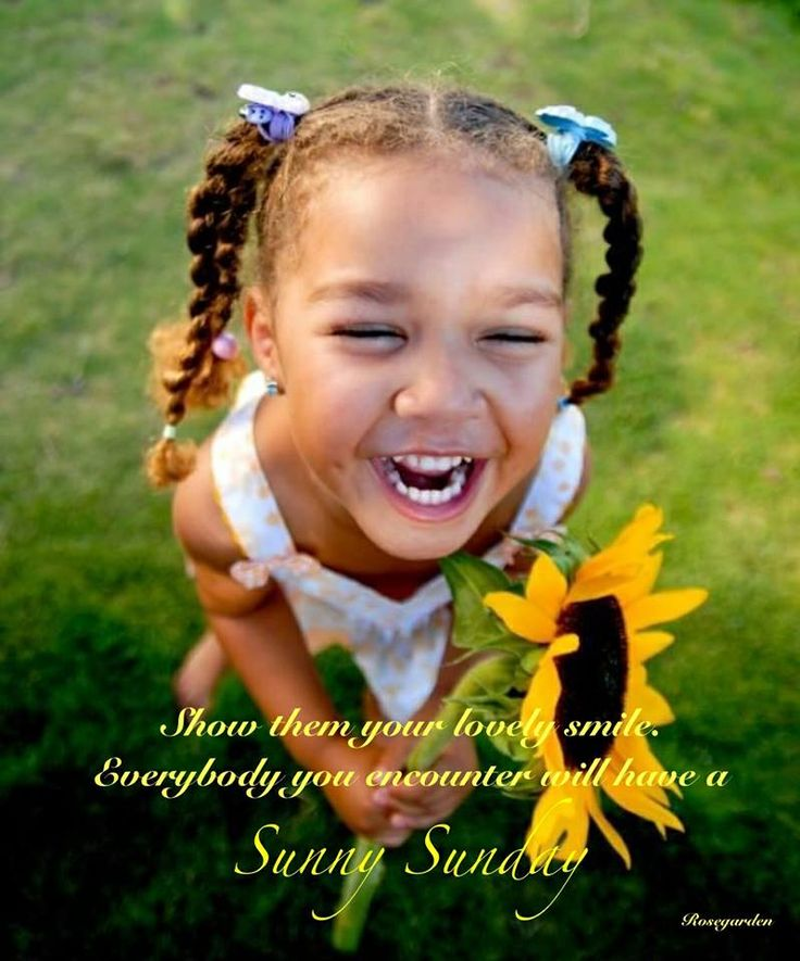 Sunny sunday | Rosegarden ~ own quotes | Pinterest