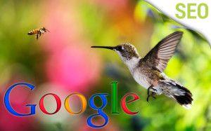 hummingbird Google 300x187 Google Updates Search with Hummingbird http://www.dweb3d.com/blog/hummingbird-colibri-nuevo-algoritmo-google/ Hummingbird (Colibrí), el nuevo algoritmo de Google Hummingbird , es el nombre del último algoritmo de Google, introducido a finales de septiembre de 2013, para muchos fué un cambio inesperado ya que Google no avisó oficialmente de este lanzamiento. #hummingbird #googlehummingbird