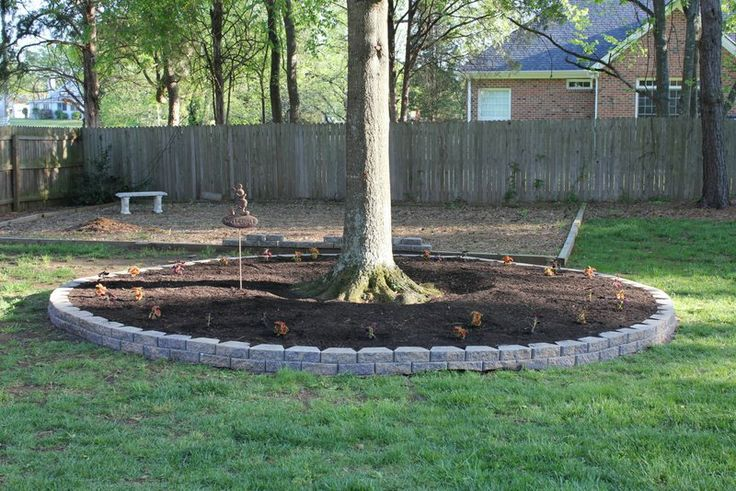 shade tree flower beds  Of course I made it Disney-esque with the ...