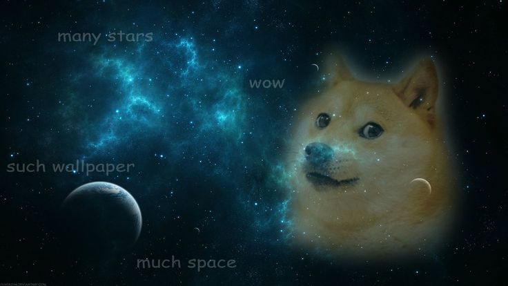 doge-meme.com | Wallpapers for computers | Pinterest