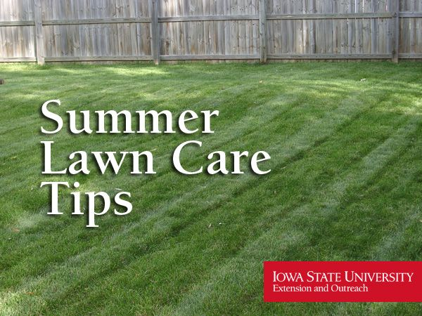 Extension and Outreach Offers Summer Lawn Care Tips