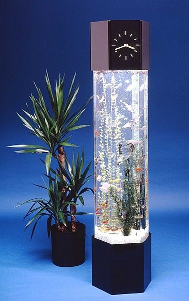 Vertical Fish Tank DONT FORGET ONLY GOLD FISH TOGETHER THEY HAVE TO ...
