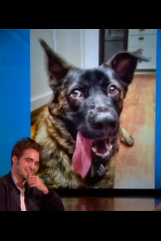 Rob in front of pic of his dog Bear -- on Ellen show