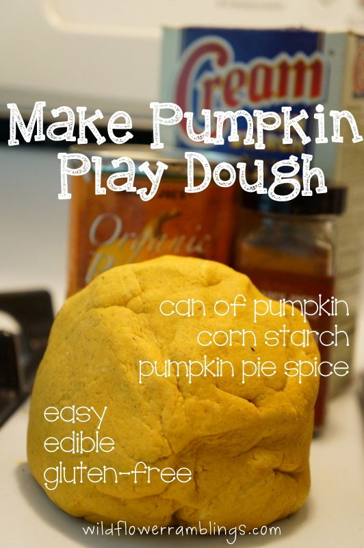 fall sensory bin {with homemade pumpkin play dough!}